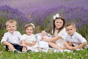 Lavender photoshoots kent