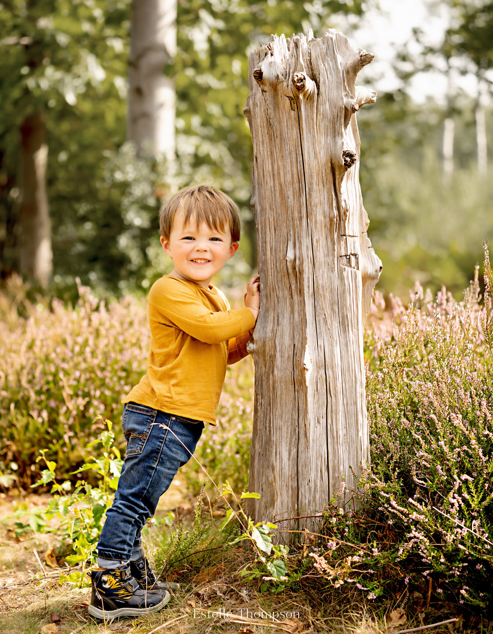 A young child leans against a tree in Sevenoaks for a family photoshoot in kent